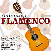 Play & Download Auténtico Flamenco by Various Artists | Napster