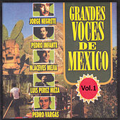 Play & Download Grandes Voces de Mexico, Vol. 1 by Various Artists | Napster