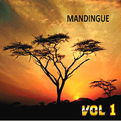 Play & Download Mandingue , Vol. 1 by Various Artists | Napster