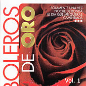 Play & Download Boleros de Oro, Vol. 1 by Various Artists | Napster
