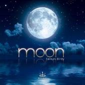Moon by Fernanbirdy