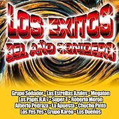 Los Exitos Del Ano Sonidero by Various Artists
