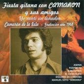 Fiesta Gitana Con Camarón y Sus Amigos. Yo Sentí un Leñador by Various Artists