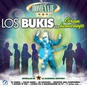 Play & Download Serie Homenaje: Los Bukis… Gran Homenaje by Grupo Lluvia | Napster