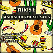 Tríos y Mariachis Mexicanos, Vol. 1 by Various Artists