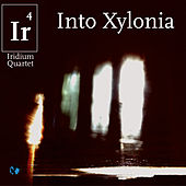 Play & Download Into Xylonia by Iridium Quartet | Napster