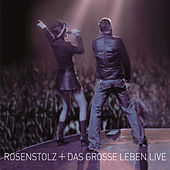 Play & Download Das grosse Leben - Live by Rosenstolz | Napster