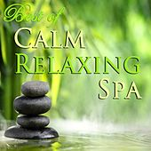 Calm Relaxing Spa by Various Artists