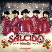 Play & Download Mi Promesa (Navidad) by Salcido Norte | Napster