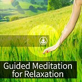 Play & Download Guided Meditation for Relaxation by Guided Meditation | Napster