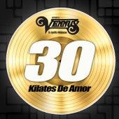 Play & Download 30 Kilates de Amor by Grupo Vennus | Napster