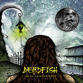 Play & Download +4626-Comfortzone by Beardfish | Napster