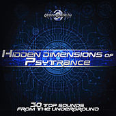 Play & Download Hidden Dimensions of Psytrance (30 Top Sounds from the Underground) by Various Artists | Napster