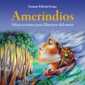 Amerindios: Música Trance para Liberarse del Stress by Gomer Edwin Evans