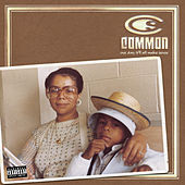 One Day It'll All Make Sense von Common