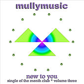 New to You by Mullymusic
