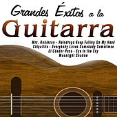 Play & Download Grandes Éxitos a la Guitarra by Various Artists | Napster