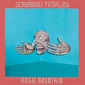Criminal Image - Single by Screaming Females