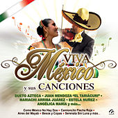 Viva Mexico y Su Mariachi by Various Artists