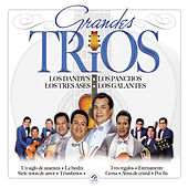 Play & Download Grandes Tríos by Various Artists | Napster