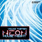 Neon House Night, Vol. 13 by Various Artists