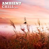 Ambient Chill, Vol. 2 by Various Artists