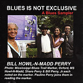 Play & Download Blues Is Not Exclusive (A Blues Sampler) by Bill Howl-N-Madd Perry | Napster