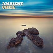 Play & Download Ambient Chill, Vol. 1 by Various Artists | Napster