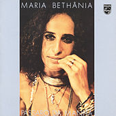 Play & Download Pássaro Da Manhã by Maria Bethânia | Napster