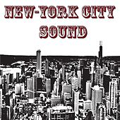 New York City Sound (Hits Charts Radio 2014) by Various Artists
