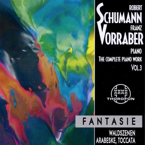 Robert Schumann: Complete Piano Work 3 by Franz Vorraber