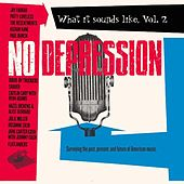No Depression: What It Sounds Like Vol. 2 by Various Artists