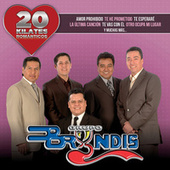 Play & Download 20 Kilates Románticos by Grupo Bryndis | Napster