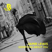 Something About You by Jamie Lewis