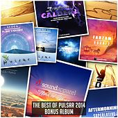 Play & Download The Best Of Pulsar 2014 (Bonus Album) - EP by Various Artists | Napster