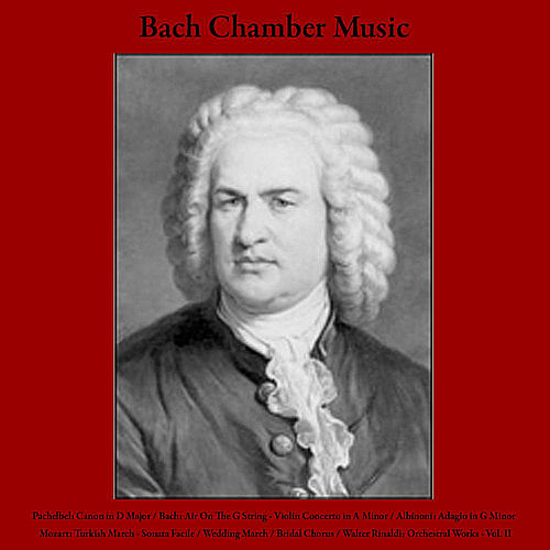 Play & Download Pachelbel: Canon in D Major / Bach: Air On The G String - Violin Concerto in A Minor / Albinoni: Adagio in G Minor / Mozart: Turkish March - Sonata Facile / Wedding March / Bridal Chorus / Walter Rinaldi: Orchestral Works - Vol. II by Bach Chamber Music | Napster