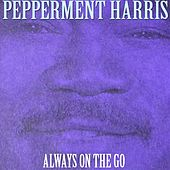 Always On The Go by Peppermint Harris
