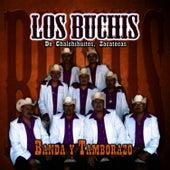 Play & Download Banda Y Tamborazo by Los Buchis | Napster