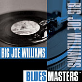 Play & Download Blues Masters by Big Joe Williams | Napster