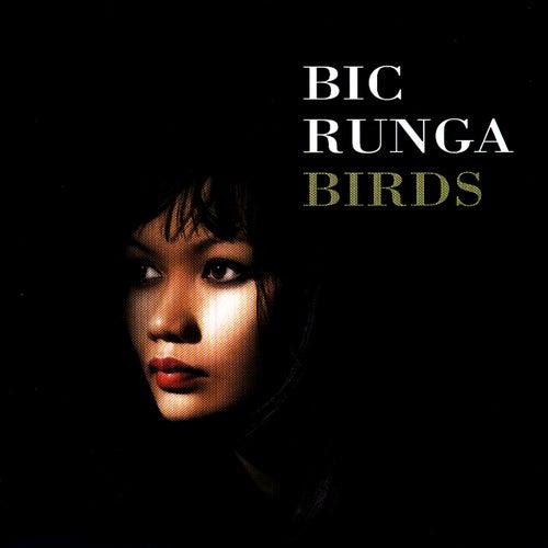 Birds by Bic Runga