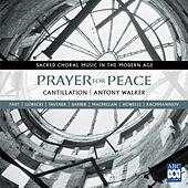 Prayer for Peace - Sacred Choral Music in the Modern Age by Cantillation