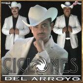 Donde Estas by Los Ciclones del Arroyo