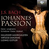 Play & Download J.S. Bach: Johannes Passion by Virtuosi Saxoniae Hallenser Madrigalisten | Napster
