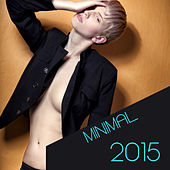 Minimal 2015 by Various Artists