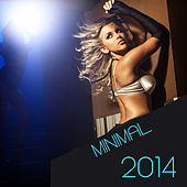 Minimal 2014 by Various Artists