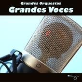 Grandes Orquestas, Grandes Voces by Various Artists