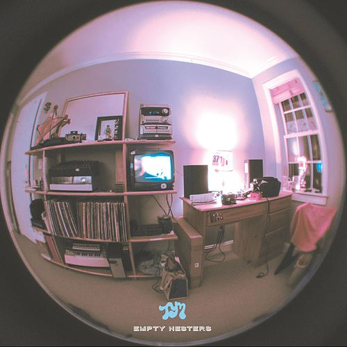 Play & Download Empty Nesters by Toro Y Moi | Napster