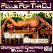 Burnt Bridges by Pollie Pop