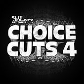 Choice Cuts 4 by Various Artists