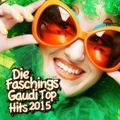 Die Faschings Gaudi Top Hits 2015 by Various Artists